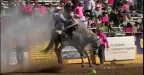 """Red Bluff """"Wild Ride"""" Winner: Tonto and the Lone Ranger"""