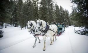 Western Winter Travel