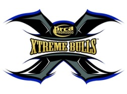 Brighton Field Day Xtreme Bulls