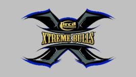 Ft. Mojave Xtreme Bulls