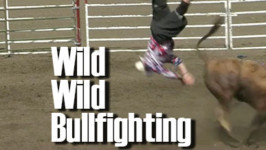 Wild, Wild Freestyle Bullfighting