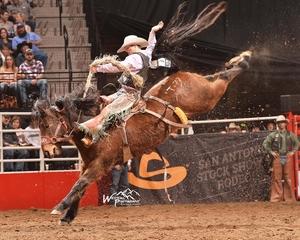 Bradshaw's Success at San Antonio Rodeo Unsurpassed