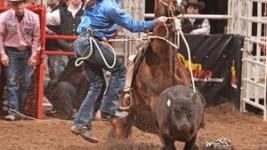 Herrin Breaks 13-Year-Old Tie-Down Record at San Antonio Rodeo