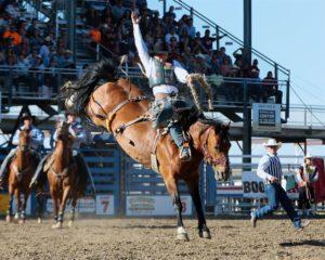 Wrights Dominate Saddle Bronc Riding At Cody Stampede Wrangler Network