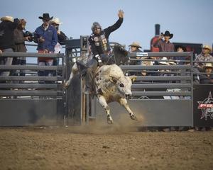 Professional Bull Riding Bucks into Salinas July 20th