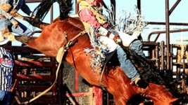Ty Breuer Wins Bareback Riding at Hometown Rodeo