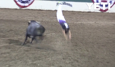 YETI Wild Ride: Reno Bulljumpers