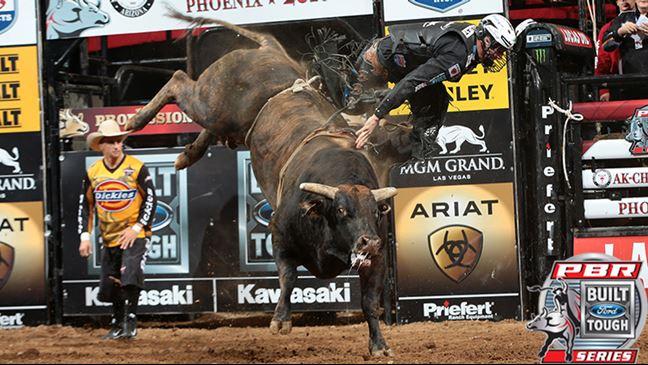 Magic Train is 7-0 this season and 26-3 in his BFTS career. Photo: Andy Watson / BullStockMedia.com