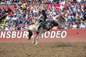 Saddle Bronc Riding: Ryder Wright