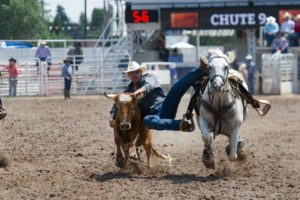 Steer Wrestling: Stephen Culling