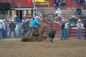 Tie-Down Roping: Westyn Hughes