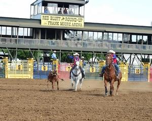 Red Bluff Hosts California Junior High Finals Rodeo
