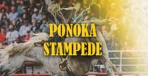 Ponoka Stampede PRCA Rodeo Finals