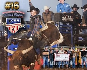 Red Bluff Dodge >> Second Time Around #16 Colton Jesse and D4 Cattle advance ...