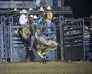 Professional Bull Riding Bucks Into Salinas July 19th