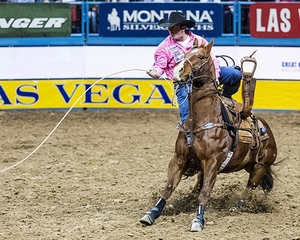 2019 Calgary Stampede Bull Riding Champion