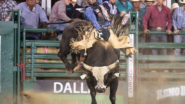 Carter Captures X Bulls Glory in Reno