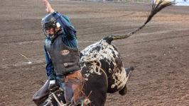 Jacoby Earns Xtreme Bulls Crown