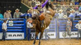 Saddle Bronc Rider Cress Sidelined with Ankle Injuy