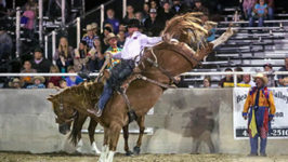 Sterling Crawley Wins Tremonton Bronc Riding