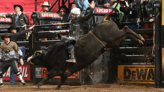 Pbr To Open 2019 Season At Madison Square Garden