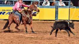 Durfey's Horse Nikko to Miss Wrangler NFR