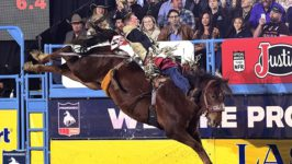 Bareback Rider Ty Breuer Out of Round 10 Due to Injury