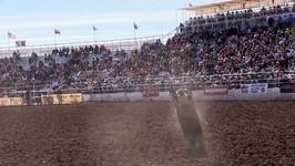 Championship Sunday in Tucson