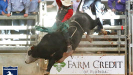 Clayton Sellars Splits Win at All-Florida Championship Rodeo
