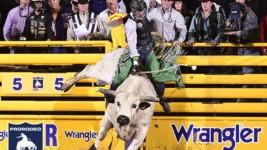 Jeff Askey Overcomes Shoulder Injury to Make Wrangler NFR