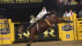 Champion is in Fine Form at the WNFR