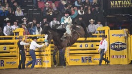 Champion Closes WNFR Strong