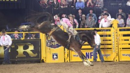 Champion Earns Third WNFR Check