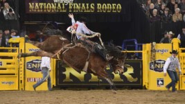 Gordon Riding Confidently at WNFR