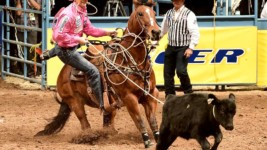 Ropers Are Ready for Cooper Event