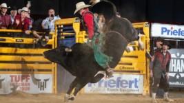 WNFR Bull Riding Profile – Clayton Sellars