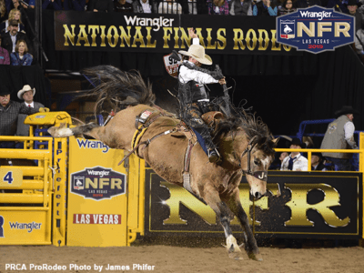 Bradley Harter To Miss Rest Of Wrangler Nfr With Injury News