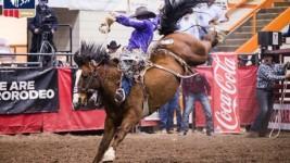 Shorty Garrett Wins Rapid City With Record-Setting Ride
