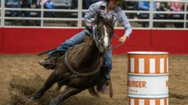 Pedone Rides into the Sunset with San Antonio Rodeo Win