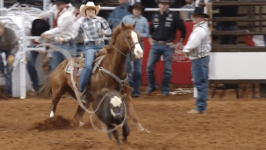 Anna Bahe Advances to Fort Worth Breakaway Roping Finals