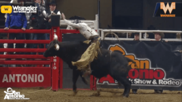 San Antonio Xtreme Bulls
