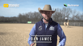 Dan James: Demonstrating the Art of Roman-Riding
