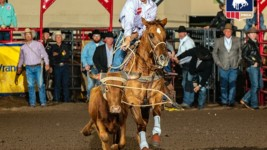 Steer Roper Cole Patterson Touches Base With ProRodeo Fans