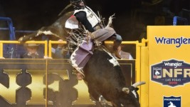 Bull Rider Koby Radley Using Time off to Recover From Knee Injury