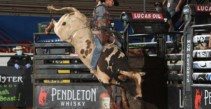 Lucas Divino and Stetson Lawrence Split Round 1 in Guthrie