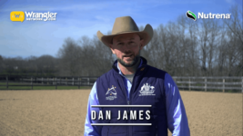 Dan James Shares Various Arena Work