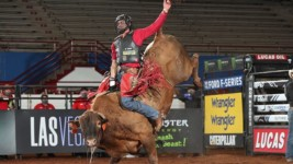 Alves Ties Shivers for Fifth-Most Qualified Rides in PBR History