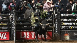 $62,500 up for Grabs for Bull Riding Champion at Stampede at the E