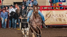 Steer Roping Has Tuf Cooper Shooting for Another All-Around Title