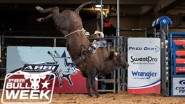 A Look at American Bucking Bull, Inc.